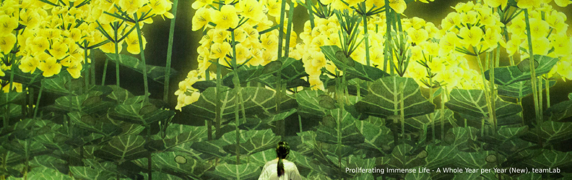 Spirits of the Flowers_02_Feb_Broccolini_1600x650.png-1140x360